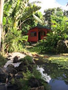 Gites deshaies - bungalow en bois - cabane de la source